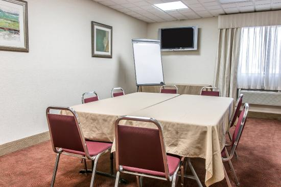 Comfort Inn Near Greenfield Village: Meeting room