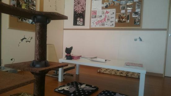 Ochi de Neko Cafe Popoki