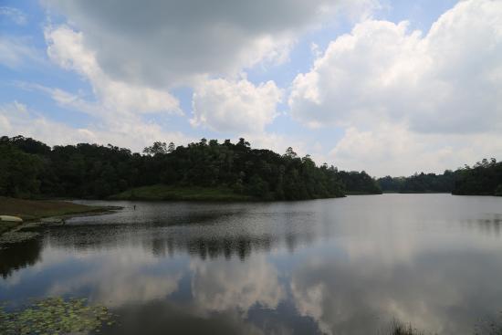 Southern Province, Sri Lanka: The lake at Hiyare.