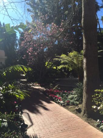 Hotel Bel-Air: Beautiful Feb weather