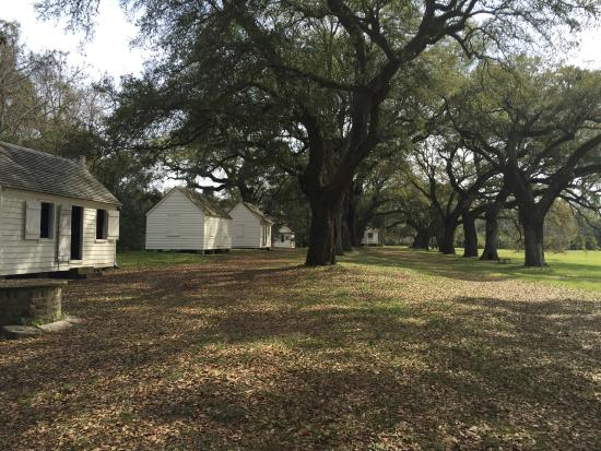 slave dwellings at mcleod plantation picture of mcleod plantation rh tripadvisor com