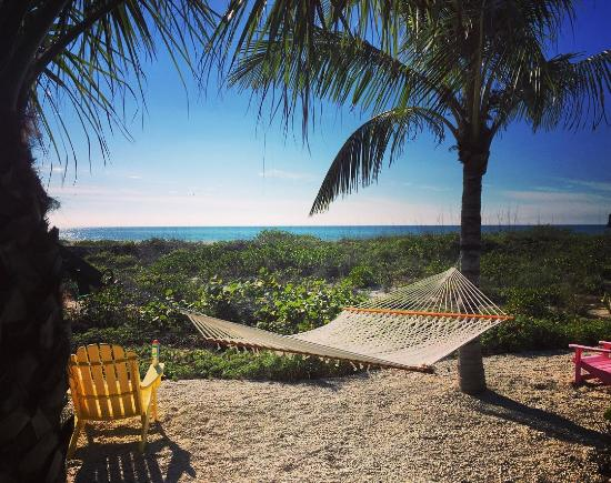 Captiva Island, FL: Hammock