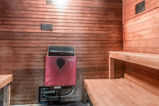 East Dubuque, IL: Sauna
