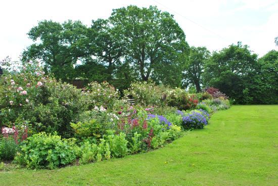 Strete Ralegh Farm Garden