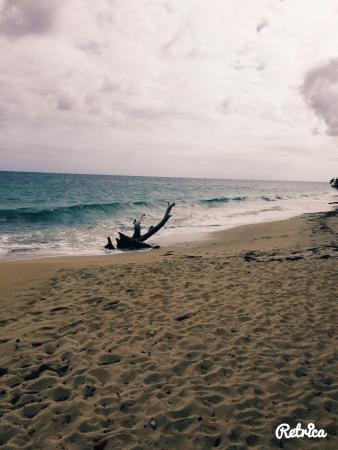 Residence Hoteliere Les Cayalines: Chemin qui mène à la plage