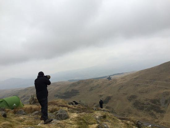 Dinas Mawddwy, UK: plane spotters on our walk - pass on the A470 - more low flying jets passed over the coffee shop