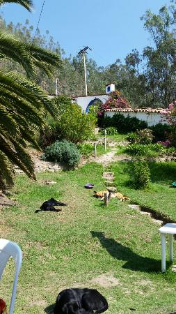 Finca San Pedro: 20160322_085134_large.jpg