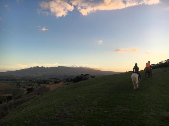 Karamu Trail Track