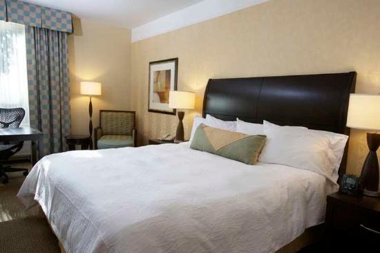 Hilton Garden Inn New Braunfels Hotel: Guest Room