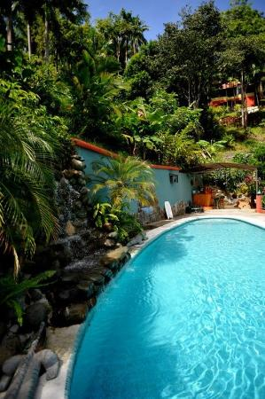 Condotel Las Cascadas: pool