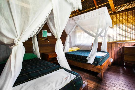 Cuyabeno Lodge: Room interior