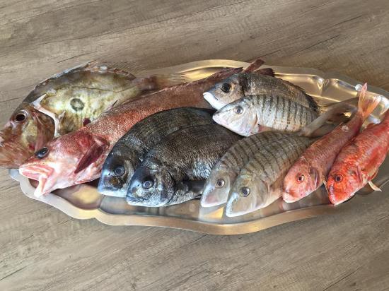 L'Oustau de la Mar: La pêche locale