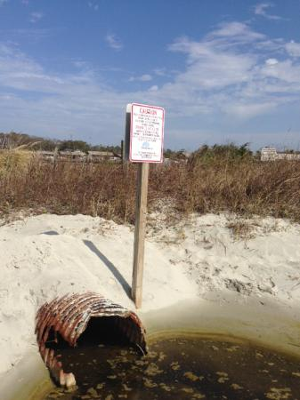 Wyndham Seawatch Plantation Bacteria Warning Sign And Disgusting Cesspool Run Off On Beach