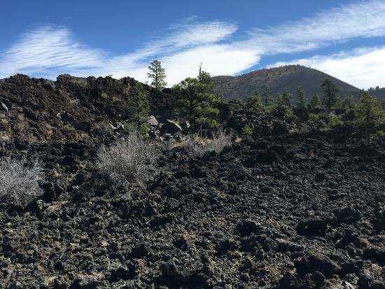 Sunset Crater Volcano National Monument: photo0.jpg