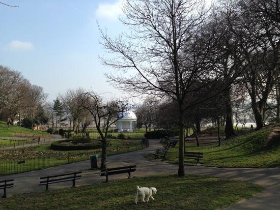 Vale Park Photo