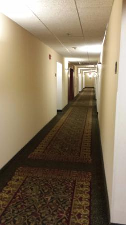 Drury Inn & Suites Indianapolis Northeast: Well lit hallways - no dark and dreary areas