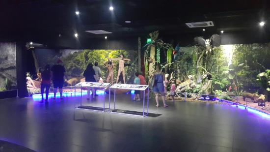 Museo de la Tierra Guarani