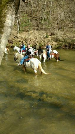 Riverside Riding Stables: Our guide Jessie let each one of know how each horse reacts to water, good info!