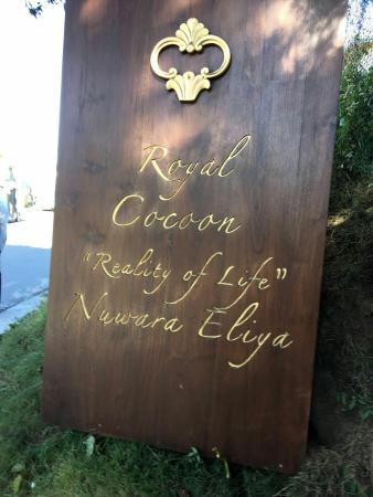 Royal Cocoon : IMG-20160323-WA0019_large.jpg