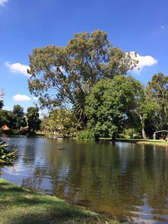 Deniliquin, Austrália: photo1.jpg