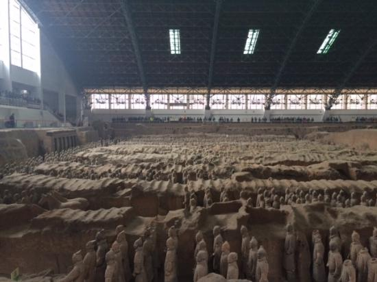 The Museum of Qin Terra-cotta Warriors and Horses Photo