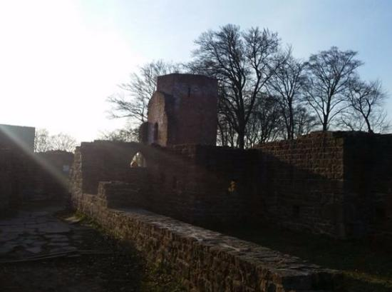 Michaelskloster: The cloister ruins in the late winter sun