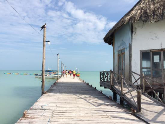 Holbox Collection Day Tour: photo1.jpg