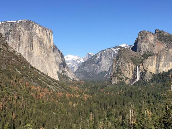 Yosemite Vacation Homes: photo0.jpg