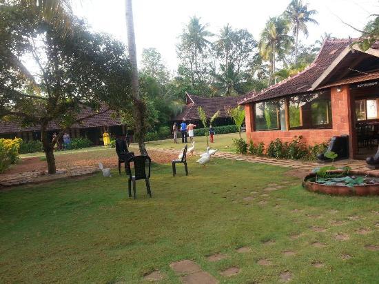 inside view of hotel s garden area picture of kayaloram heritage rh tripadvisor com