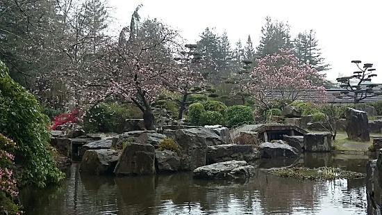 20160325 090842 picture of jardin japonais nantes tripadvisor for Jardin japonais nantes