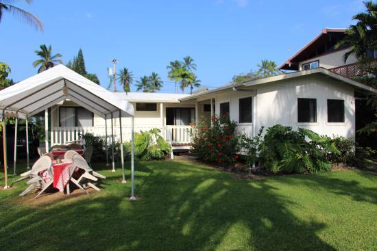 Aaron's Cottage: Backyard