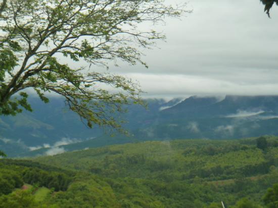 clouds of mist magical wonderland picture of coach house hotel rh tripadvisor co za