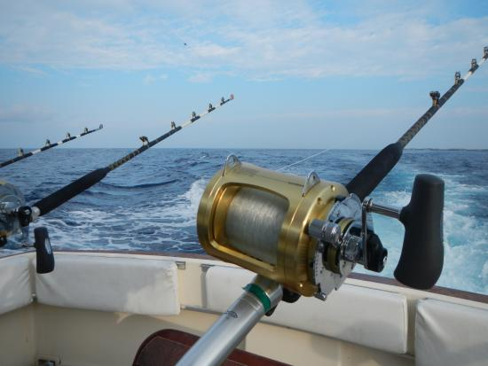 these are not reels for catching bluegill picture of kona sea rh tripadvisor co uk