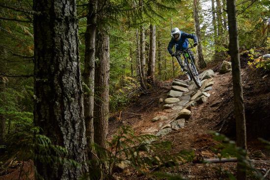 Whistler Sports Rentals - Base Bikes
