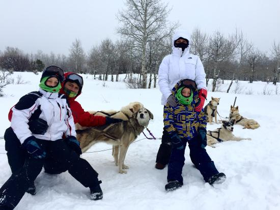 Mountain Musher: It was pretty awesome.  We have boys 10 and 6 years old, we went in this because of them. You ca