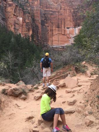 zion national park picture of vegas insider tours las vegas rh tripadvisor com