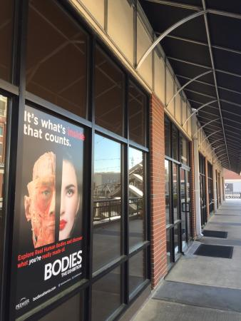 Bodies... the Exhibition Atlanta at the Premier Exhibition Center: Outside of building