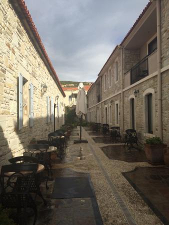 Yenifoca صورة فوتوغرافية