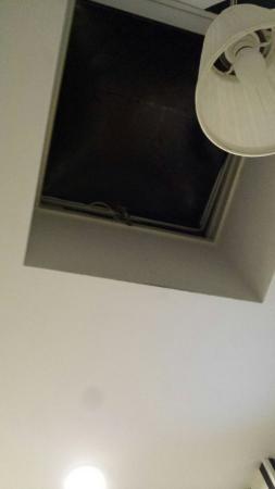 Hotel Flipper: IMG-1458594430747-V_large.jpg
