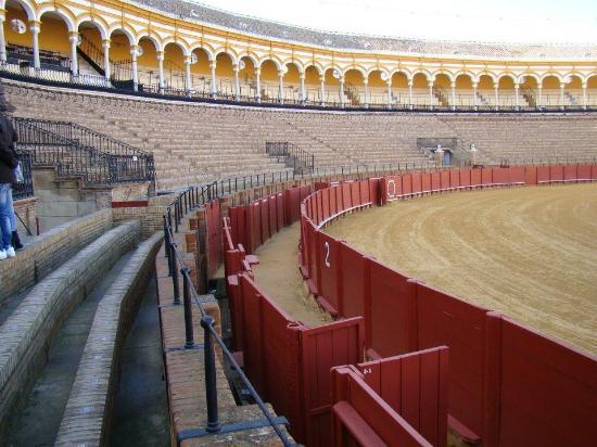 Hostal Museo : Plaza de toros