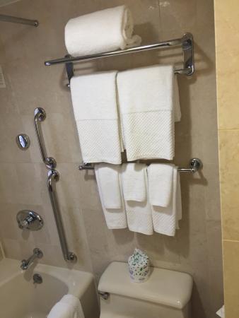 Hilton Manhattan East: Towel rack