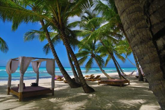 Beach club esclusivo y maravilloso