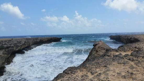 Washington-Slagbaai National Park, Bonaire: 20160325_112629_large.jpg