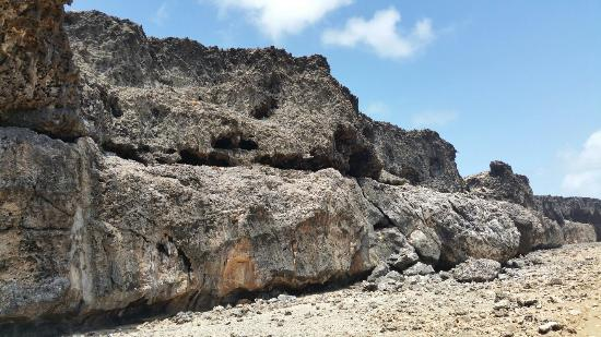Washington-Slagbaai National Park, Bonaire: 20160325_113412_large.jpg