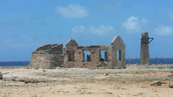Washington-Slagbaai National Park, Bonaire: 20160325_123222_large.jpg