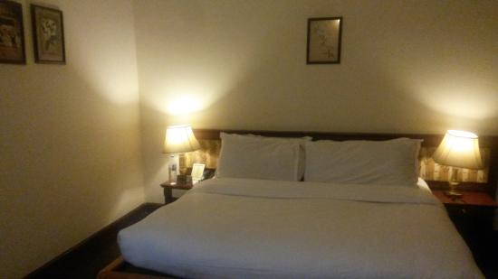 Hotel Sepal : View of room