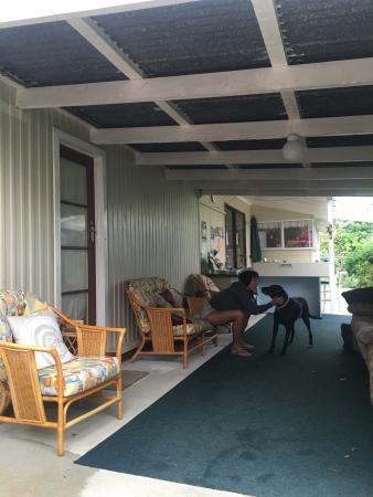 Coromandel Tui Lodge : photo3.jpg