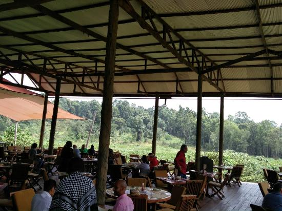 An oasis of peace in the bustle of Nairobi