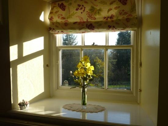The Old Vicarage Bed & Breakfast : view from room with fresh flowers
