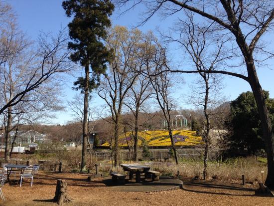 Sakata no Tane Green House